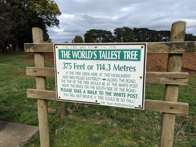 Thorpdale, Gippsland, World's Tallest Tree, Mountain Ash, tourist attractions, plaque