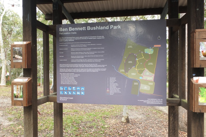 Ben Bennett Bushland Park, heart of Caloundra, varying ecosystems, eucalyptus, heath, rainforest systems, trails were marked, disappointing bird life and fauna, good picnic spots, barbecues, parking and toilet facilities
