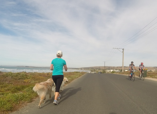 Encounter Bikeway, Goolwa Wharf, Surfers Parade, Goolwa Boardwalk, Middleton, The Bluff, Granite Island, Causeway, Port Elliot Bakery