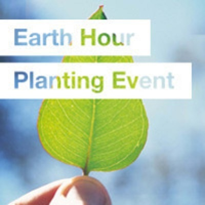 earth hour, planting event, plant