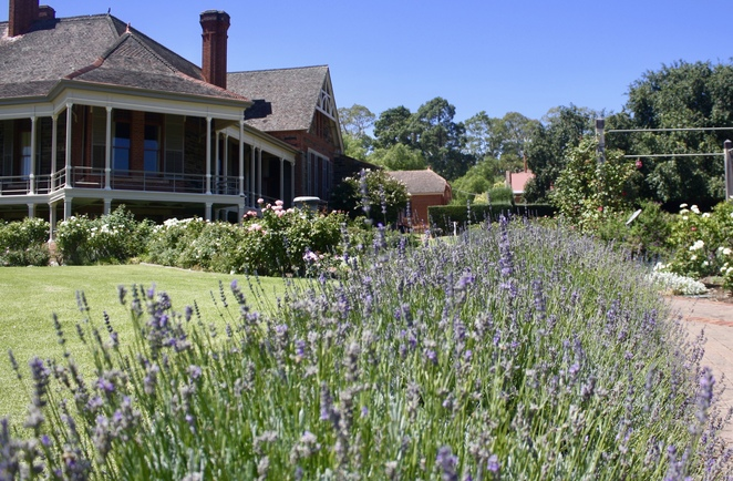 Free Guided Tour of Urrbrae House