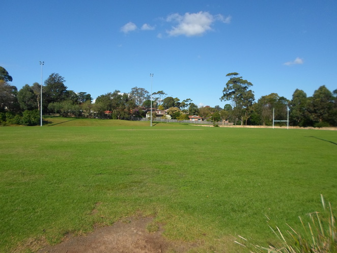 headen park, headen park oval, thornleigh parks