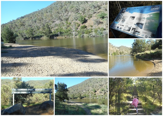 kambah pool, river swimming, murrumbidgee river, ACT, kambah pools, family beach,