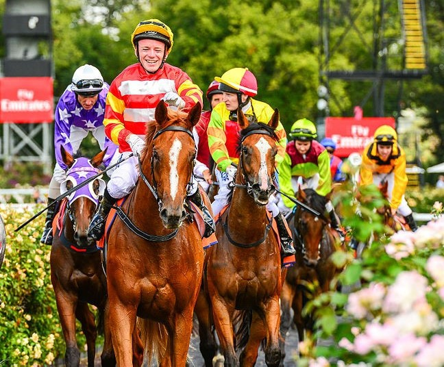 Melbourne Cup, Melbourne Cup Carnival, Emirates, Derby Day, Oaks Day, horse racing in melbourne,