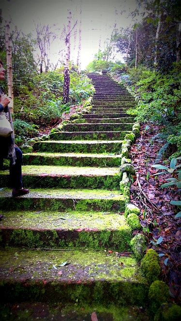 mount macedon, garden, walk, steps