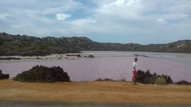 pink lake, things to do in kalbarri, unusual things in wa, port gregory WA, Hutt Lagoon