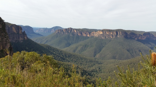 pope's glen track, blackhealth, lookouts, blue mountains