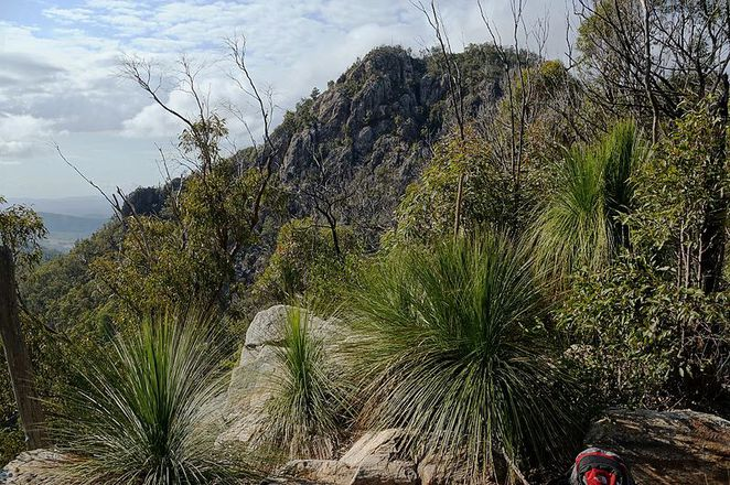Walking, Treks, Guided Tours, Free, National Parks, Environment, Ipswich, Flinders Peak, Outdoor, Family