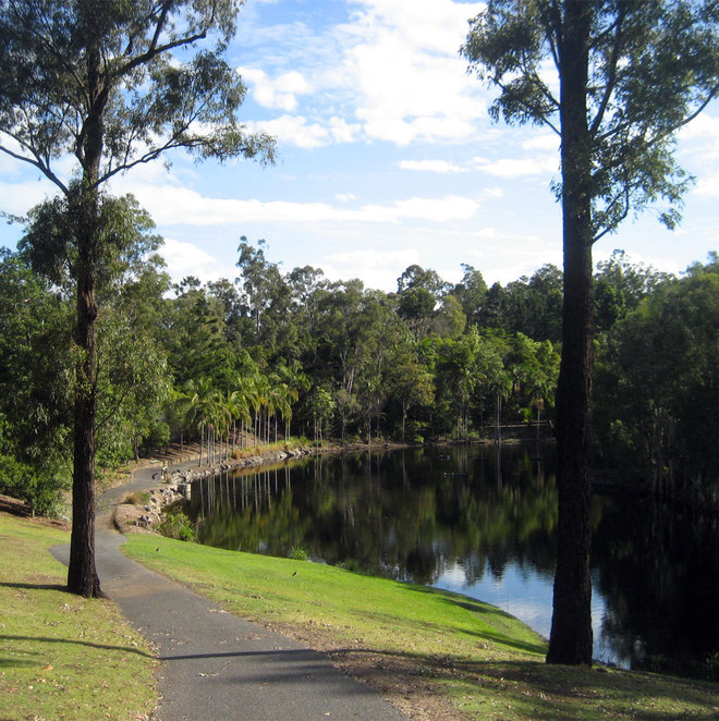 The path around the lake at the Brisbane Botanic Gardens at Mt Coot-tha