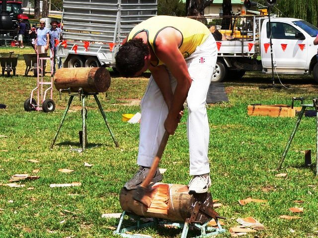 Wood-chopping demonstration. This image is by Fairv8 at Wikimedia Commons