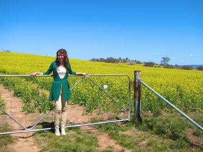 Canola Fields, Bathurst, Central West NSW