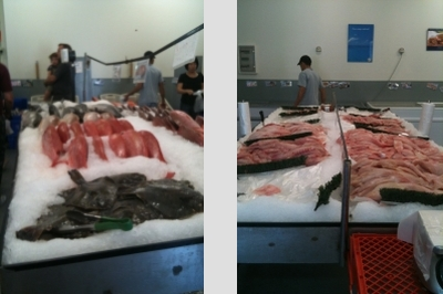Catalano Seafood Retail Factory Direct