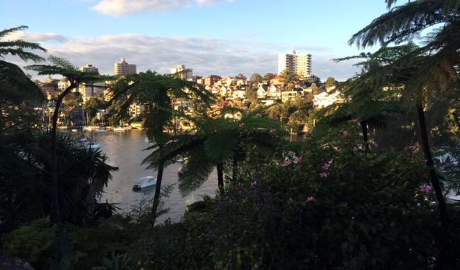 cremorne, point, reserve, walks, circuit, elephant's ear, The Lex and Ruby Graham Garden