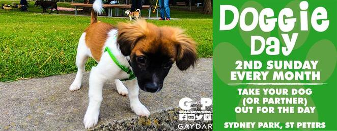 doggie day, sydney park, dog friendly, dog event, off leash dog park, st peters, southern suburbs, dog meet up, g4ps doggie day, free, byo, picnic, family, sunday