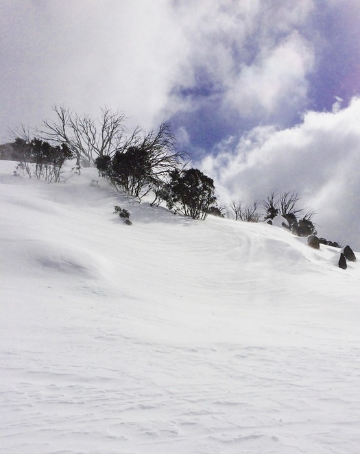 Snowshoeing at Perisher