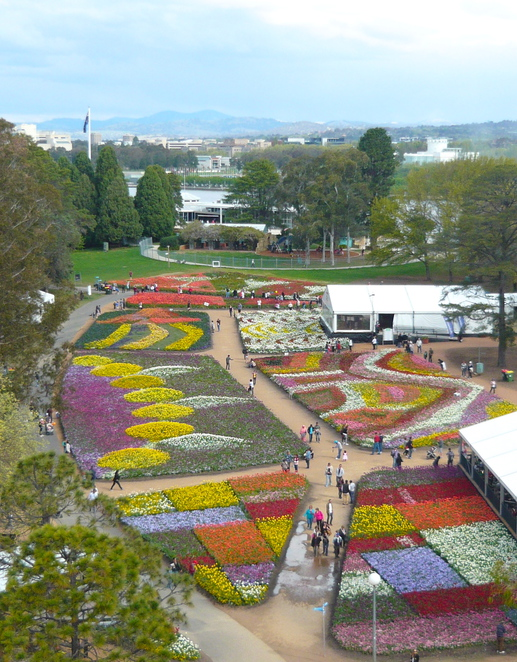 Floriade 2013, NightFest, tulips, flower festival, Canberra