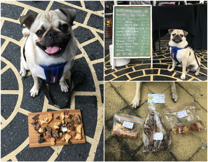 markets, brisbane markets, dog friendly, dog friendly markets, milton markets, carseldine markets, kelvin grove village markets, dog treats, dog ice cream, hugo's ice creamery, soapy moose, the soapy moose, jojo and lola's jerky chompers, redcliffe jetty markets