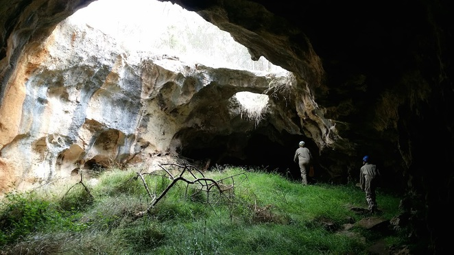 naracoorte caves