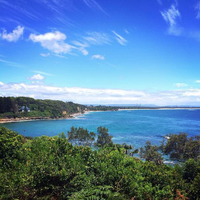 norah head, beach, central coast, cabbage tree, harbour, bay