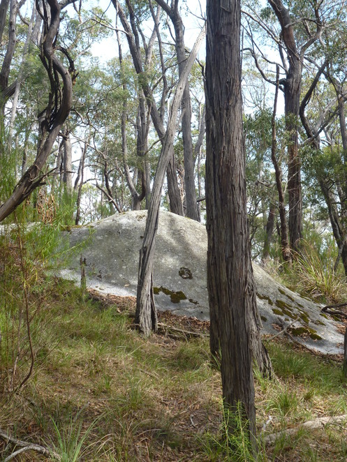 Mount Cannibal Flora and Fauna Reserve