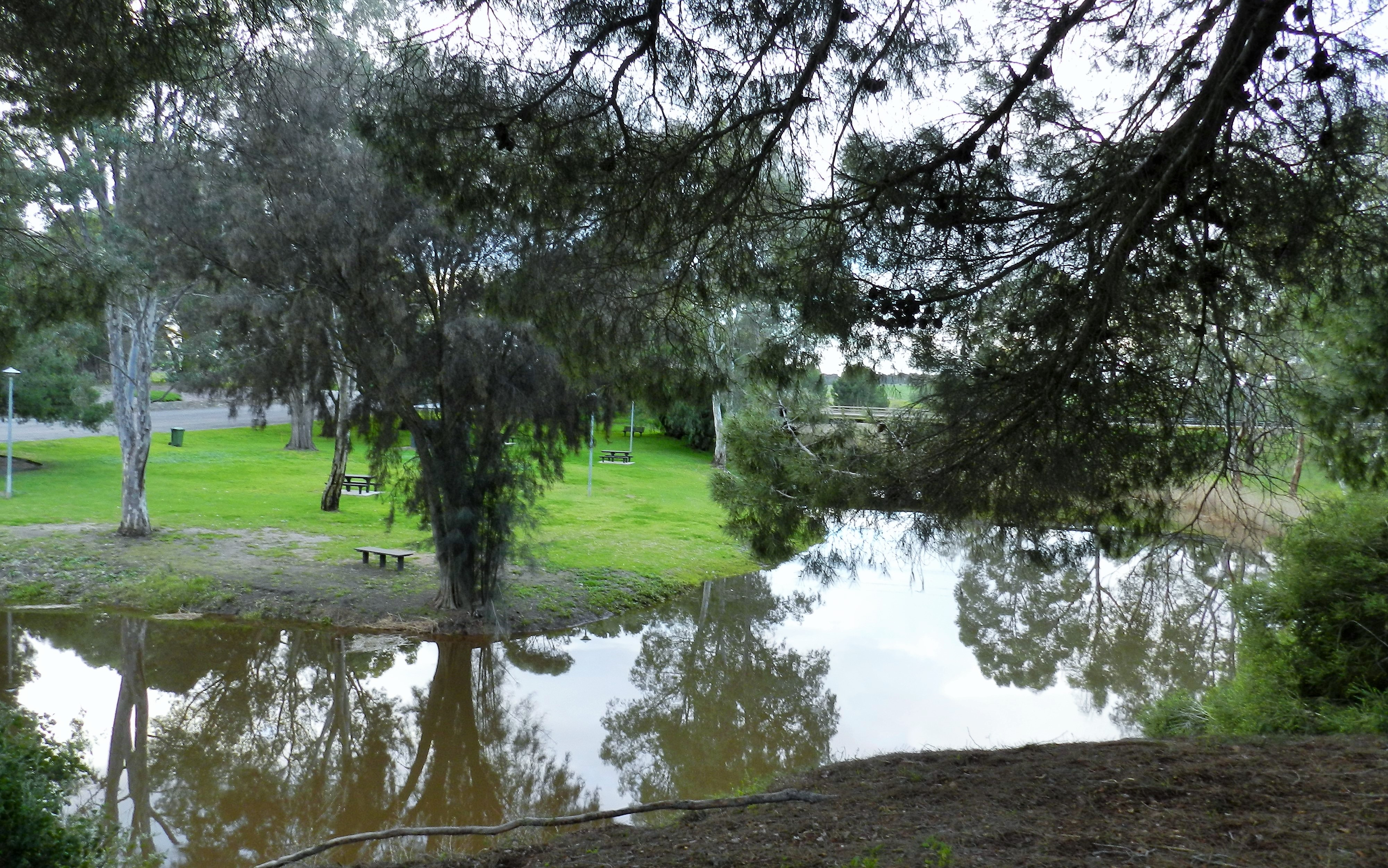 The duck ponds trail and picnic ground riverton adelaide for The riverton