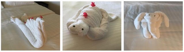 Shangri-La, Shangrila, Fiji, Viti Levu, Resort, Spa, towel Animals, Towel swan, towel turtle, swan, turtle, bed, room, flowers, fijiian, housekeeping,