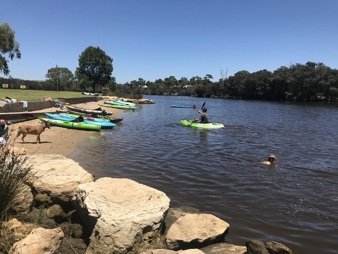 SUP hire perth, pups on sups, sup lessons, where to sup in perth, stand up paddle board perth, things to do with dogs in perth, suptonic,
