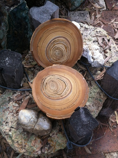 Thundereggs, camping, fossicking QLD, Mt Hay, Rockhampton, dig the tropic