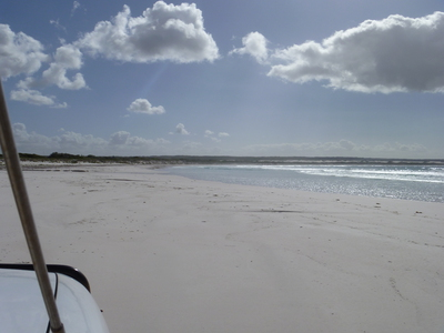 Wedge, Island, Lancelin, beach, 4x4