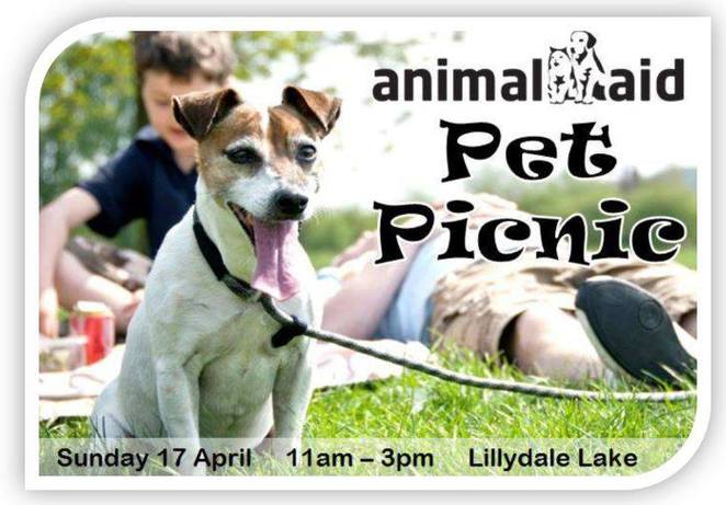 Animal Aid Pet Picnic