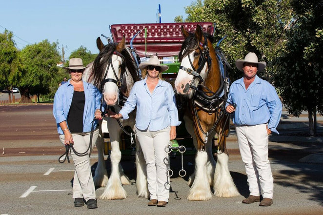 ANZAC Cottage time capsule and Clydedales