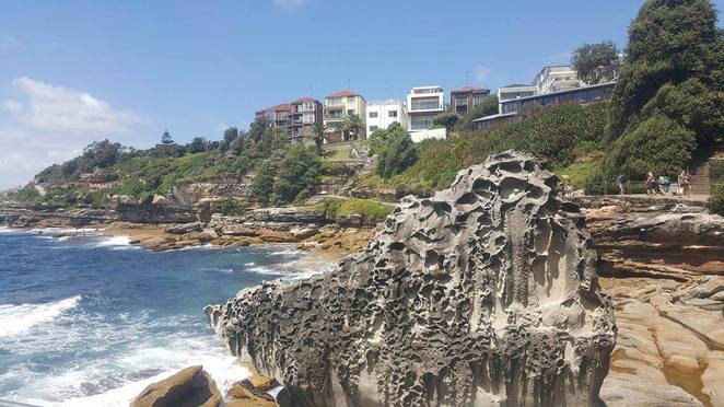 bondi to coogee, coastal, walk