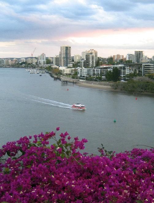 The little red City Hopper Ferry making its way along Brisbane River