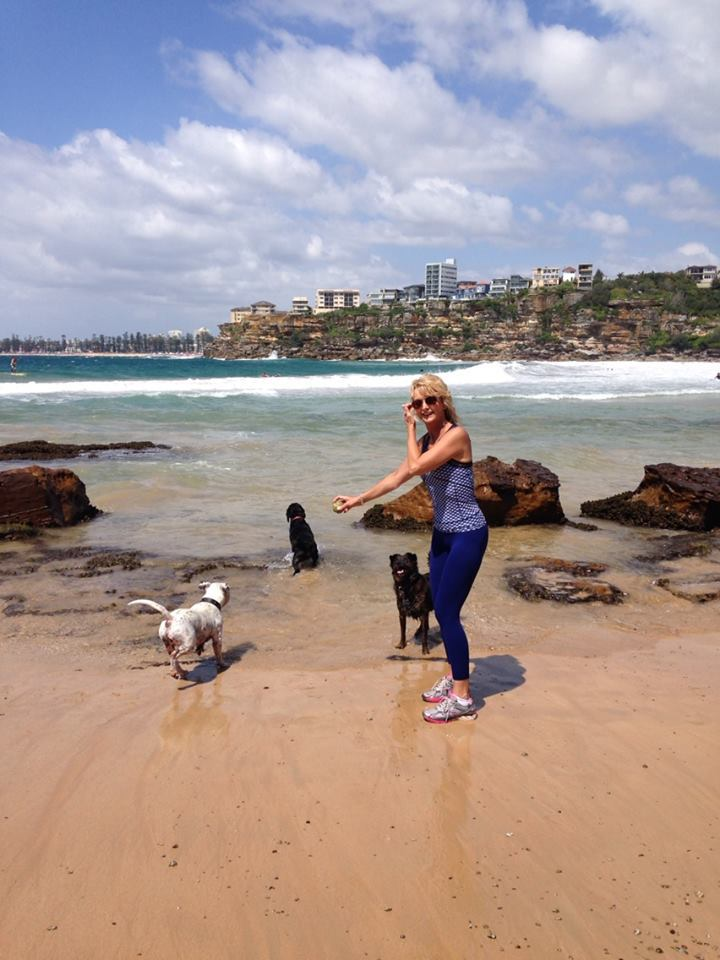 Dog Friendly Walks Northern Beaches