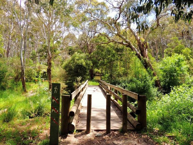 food festival, tasting australia, mothers day, free things to do, fun things to do, victoria square, food and wine, market, markets, heysen trail