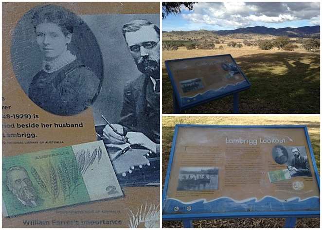 lambrigg lookout, canberra, ACT, history, tharwa, murrumbidgee river corridor, ACT, william farrer,