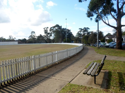 mark taylor oval, waitara oval
