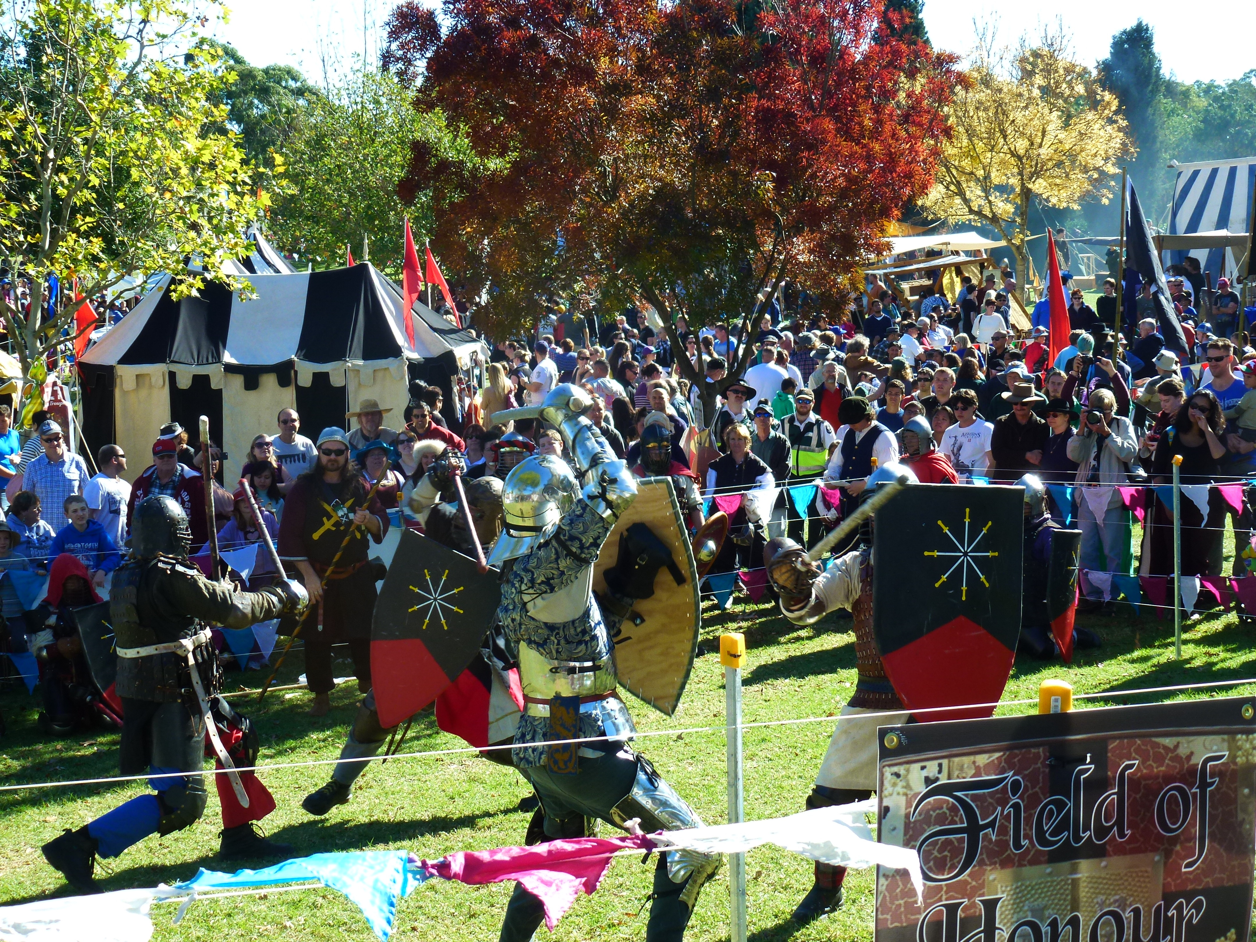 Monifieth Medieval Fair, a Charities Crowdfunding Project in ...