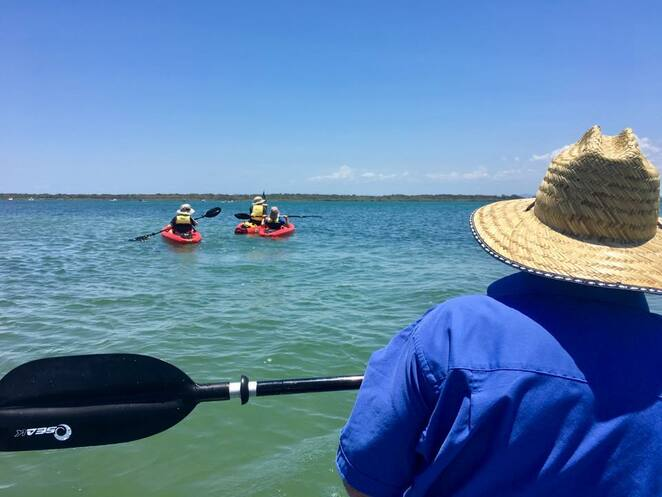 Moreton Bay offers the perfect environment for kayaking