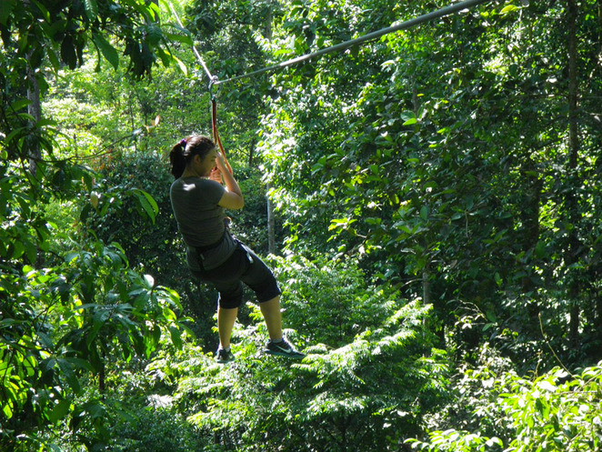 skytrex adventure flying fox