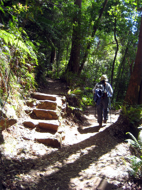 While the hike is not long, the hike is reasonably steep