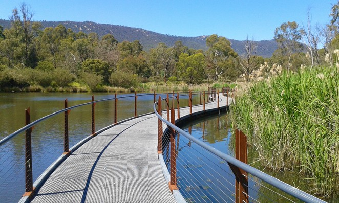 the sanctuary, tidbinbilla, canberra, ACT, walks, boardwalk, nature park, koalas, wildlife