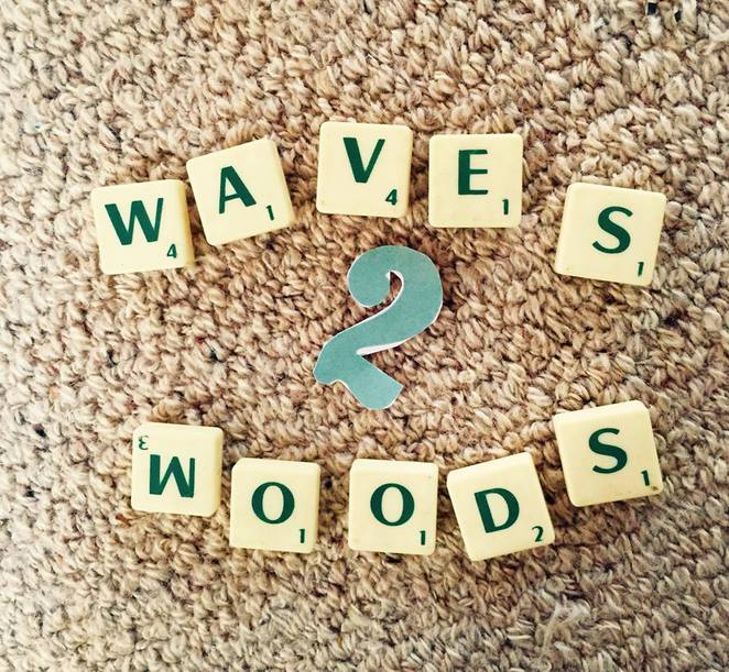 Waves 2 Woods