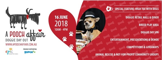 a pooch affair, kids, children, june, 2018, activities, whats on, EPIC, exhibition park in canberra, dog, events,