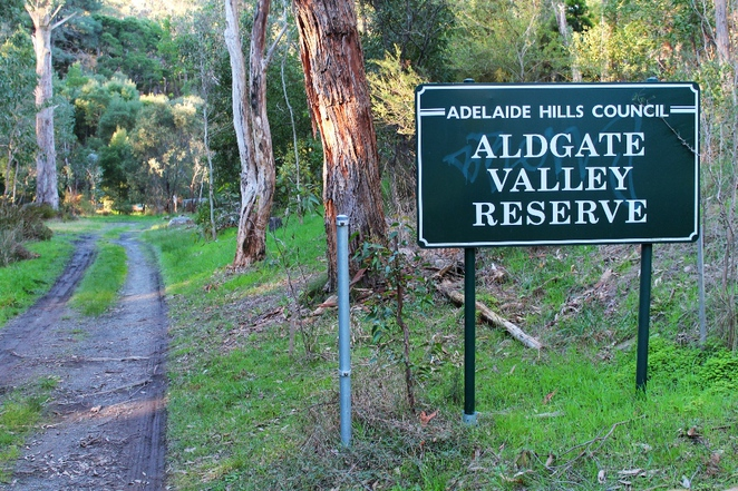 adelaide hills, aldgate, mylor, trail, walking trail, bandicoots, walk, adelaide, dogs, reserve