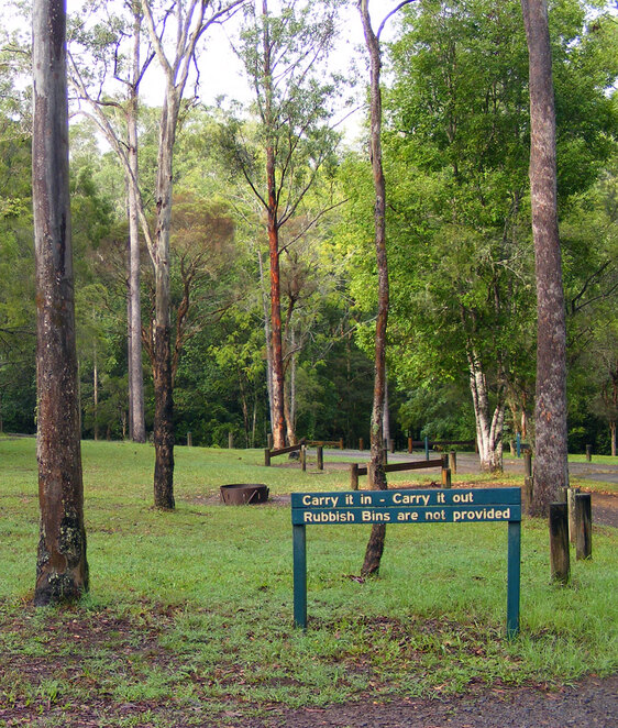 Booloumba Creek is a series of campgrounds