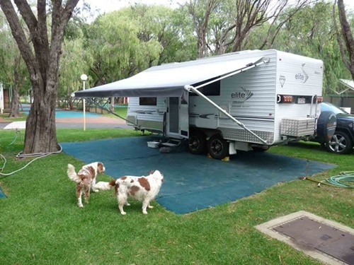 caravan,with,dogs