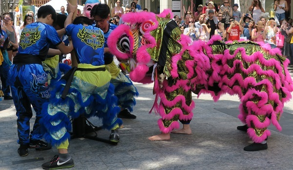 Chinese, lunar, new year, Sunnybank, year of the pig, rooftop party, fireworks, lion, may cross