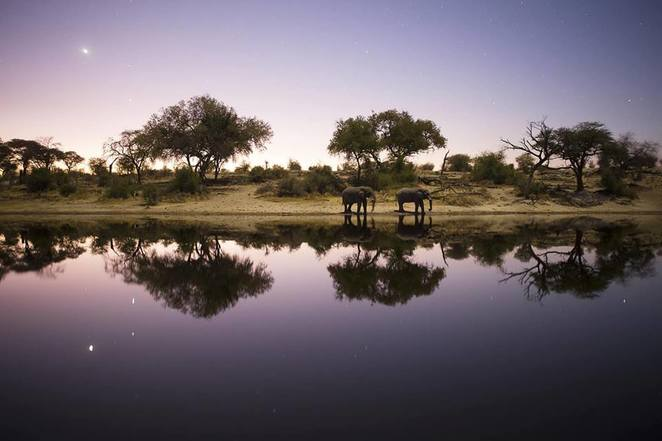 Into the Okavango, film, movie, documentary, Neil Gelinas