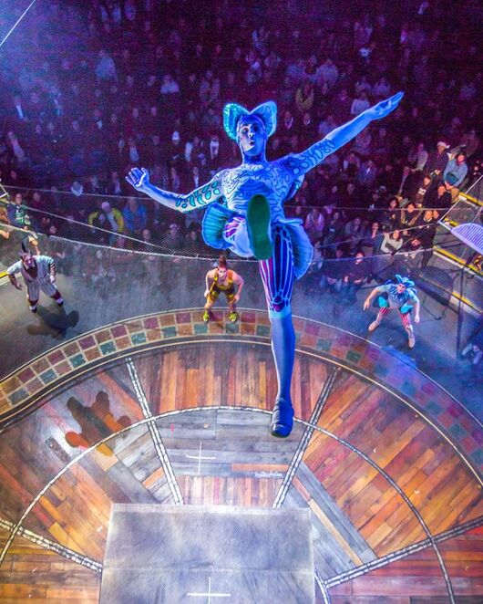 Be wowed by stunning acrobat performances